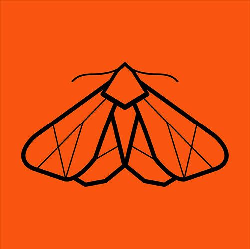 Tiger Moth Drones